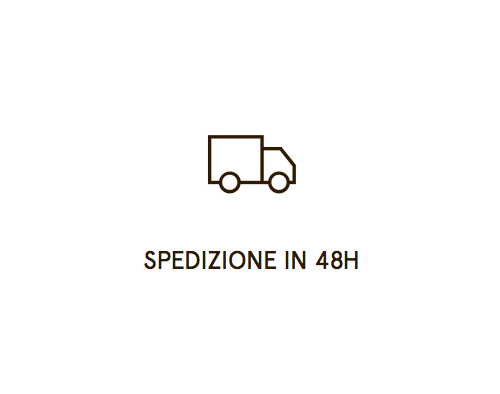 Spedizione rapida - Servizi Brocanelli per Vendita Online